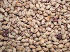 Φασόλια μπαρμπούνια εισ/γης χύμα 500γρ