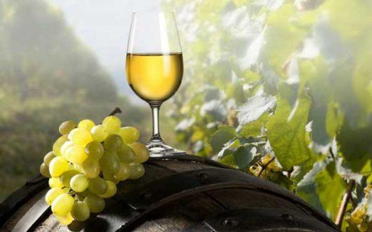 Οίνος λευκός Μοσχοφίλερο Νεμέας χύμα 1 λίτρο