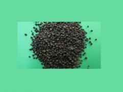 Πιπέρι μαύρο άκοπο Βραζιλίας χύμα